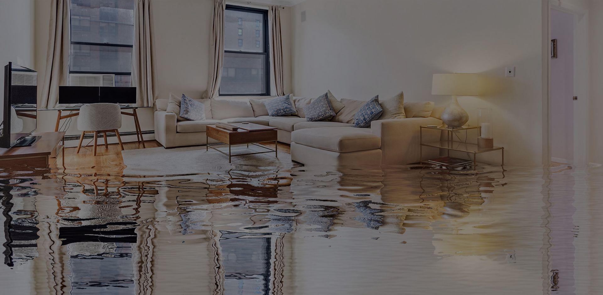 осушение помещений после потопа